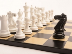 Bold Chess Gloss White v Shadow Black close up 1