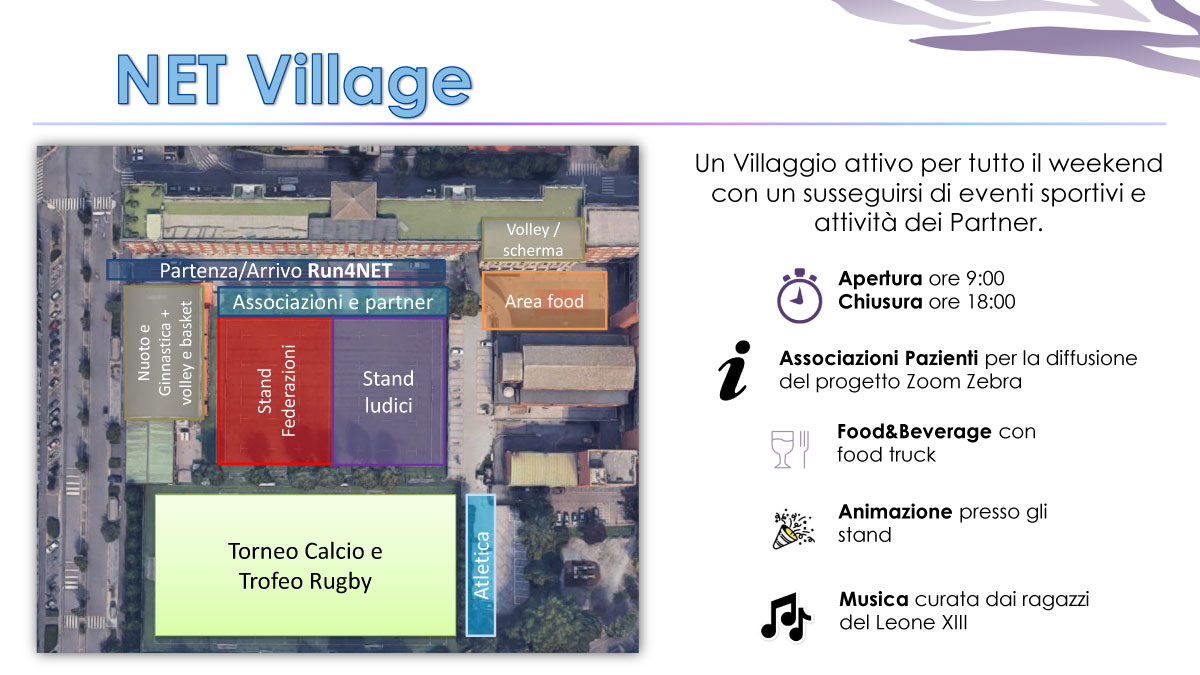 ZOOM ZEBRA NET Village